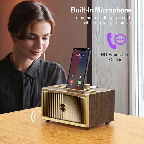 V6 Bluetooth Speaker With FM Radio